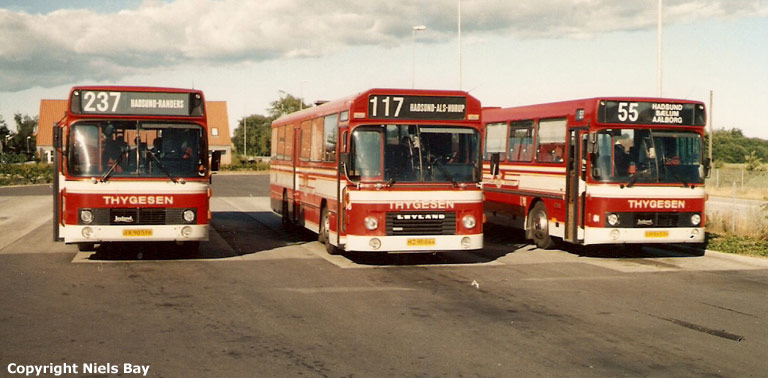Østhimmerlands Rutebiler 77/JX90516, 66/HZ95044 og 81/LH94534 på Hadsund rtb. den 14. juli 1989