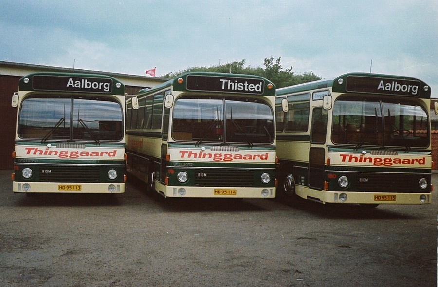 Thinggaard 178/HD95113, 179/HD95114 og 180/HD95115 i Nørresundby i 1980