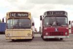 Aalborg Omnibus Selskab 245 og Odense Bytrafik 130