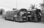 DSB 843 og 845