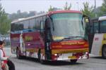 Søndergaards Busser 166