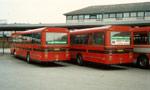Sechers Rutebiler 16 og 10