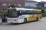 Pan Bus 8293