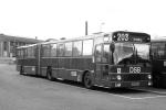 DSB 954