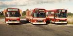 Østhimmerlands Rutebiler 77, 66 og 81