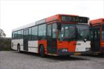 Ditobus 266