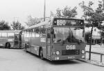 DSB 025