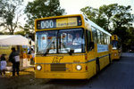 Linjebus 6504