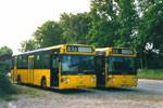 Linjebus 6041 og 6044