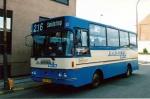 Papuga Bus 11