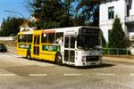 Pan Bus 217