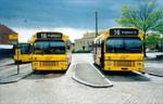 Bus Danmark 1431 og 1432