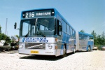 Papuga Bus 10
