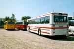 De Hvide Busser 31