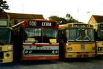 Roskilde Omnibusselskab (lånebusser)