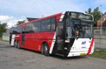 Pan Bus 259