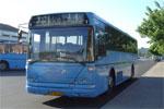 Wulff Bus 2657