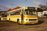 De Gule Busser 135
