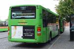 Wulff Bus 1041