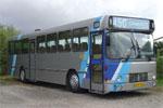 Wulff Bus 146
