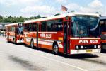 Pan Bus 201