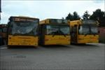 De Hvide Busser 8775, 8736 og 8760