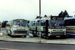 Vestsallings Buslinier
