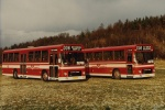 Østhimmerlands Rutebiler