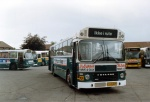 Randers Byomnibusser 105