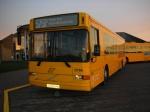 De Hvide Busser 8766