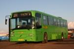 Wulff Bus 3286