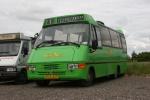 Wulff Bus 3805