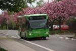 Wulff Bus 3268