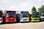 Combus 2204, Thinggaard 279 og 254