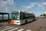 Ditobus 294