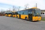 Lokalbus 4437