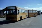 Wulff Bus 250