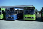 Wulff Bus 197