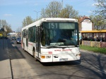 Nowak Transport 050