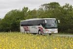 Papuga Bus 27
