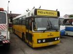 PKS Plock 50911