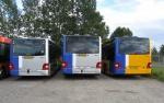 Arriva 3055, 3054 og 3053