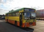 Beta-Bus