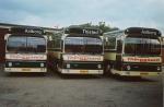 Thinggaard 178, 179 og 180