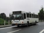 Papuga Bus 44