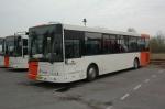 Ditobus 638