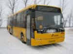 Netbus 8516