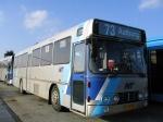 Wulff Bus 3173
