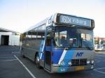 Wulff Bus ???
