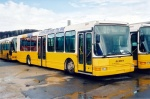 Bussen 23
